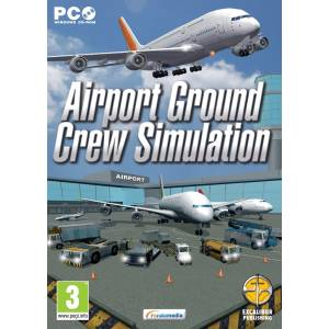 Airport Ground Crew Simulation (PC)