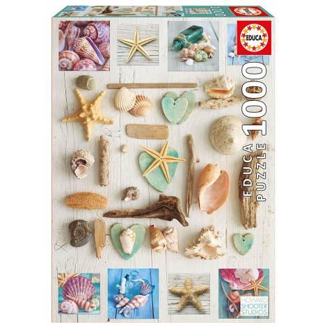 Educa Παζλ 1000Τεμ. Seashells Collage (17658)