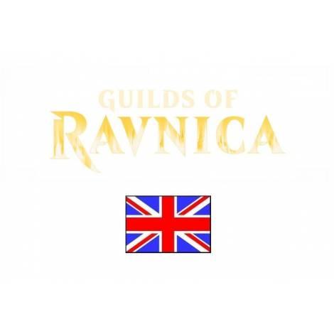 Magic: The Gathering – Guilds of Ravnica Guild Kit Display