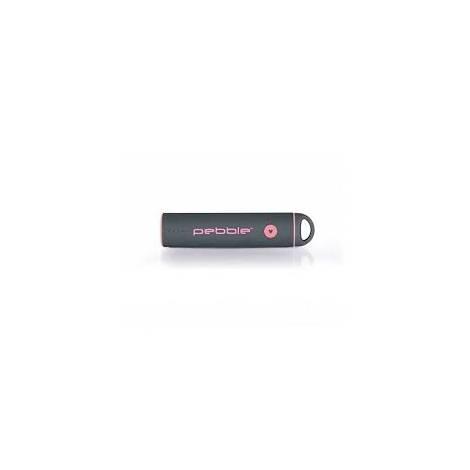 Pebble Powerstick Portable Rechargeable Power Bank 2600mah - Grey (VPP-301-BCN-G)