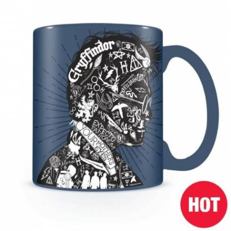 Pyramid Harry Potter (Magic Portrait) Heat Change Mug (SCMG24936)